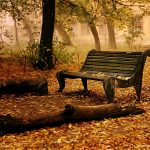 Cool-Autumn-Nature-Wallpaper-Picture-1860